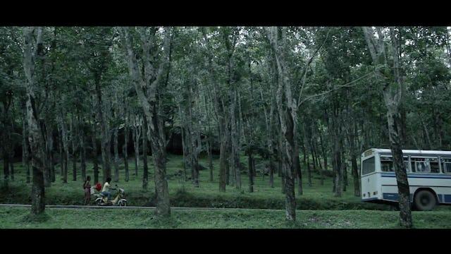 Frangipani - Trailer