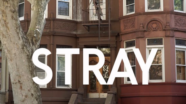 "Stray - S1: E8 - ""Magic Man"""