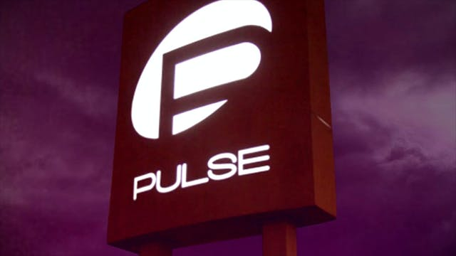 49 Pulses - Trailer