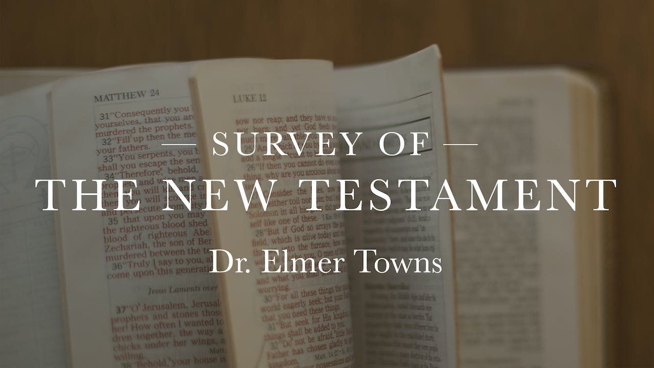 Survey Of The New Testament Ecourse