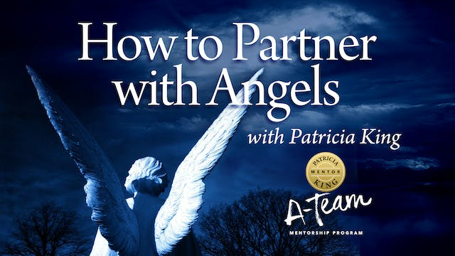 How to Partner with Angels - Session 4