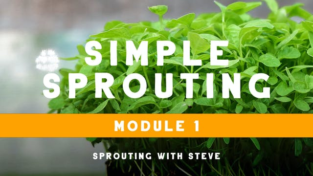 Simple Sprouting Mod 1:  ABC's of Sprouting Day 2b