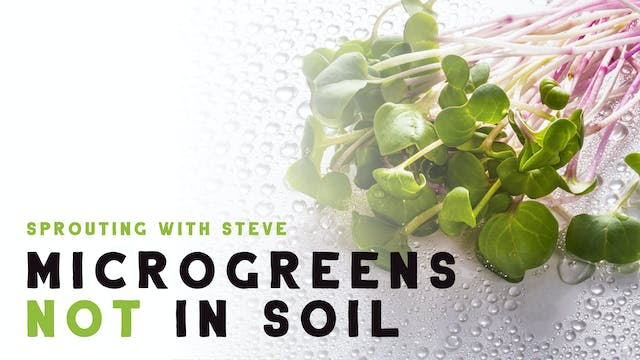 Microgreens Not In Soil - Hydroponics Part 3a