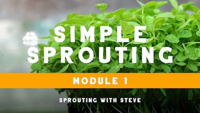 Sprouting With Steve Course Overview