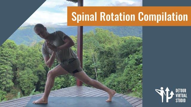 Spinal Rotation Compilation