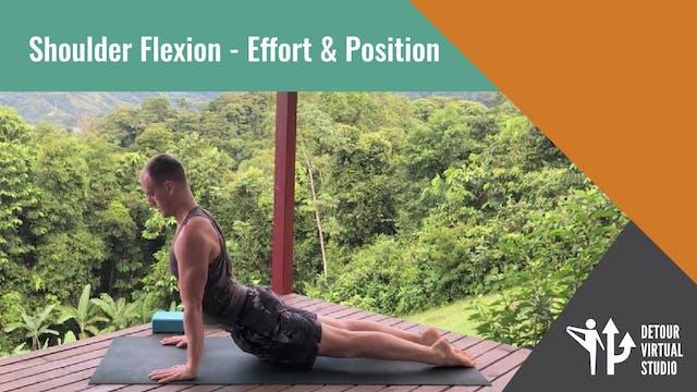 Shoulder Flexion - Effort & Position