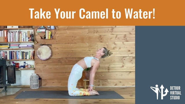 Take Your Camel to Water!