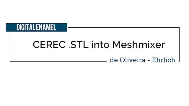 CEREC STL into Meshmixer and Hollow M...