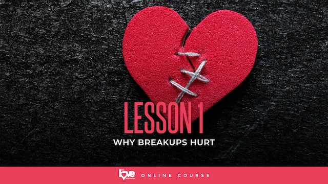 Lesson 1 - Why Do Breakups Hurt
