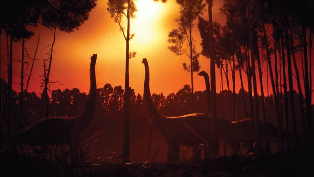 Phil Tippett's Dinosaur! + Prehistoric Beast Package