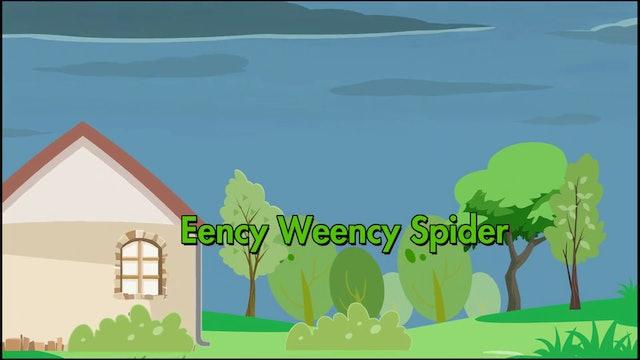 Eency Weency Spider - Teacher Set