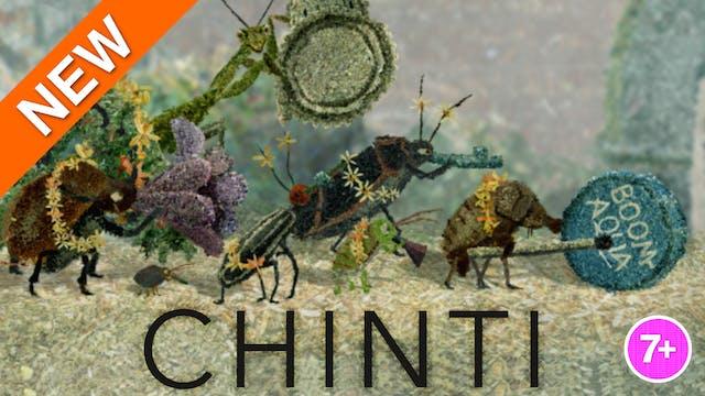 Chinti
