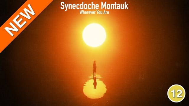 Synecdoche Montauk - Wherever You Are