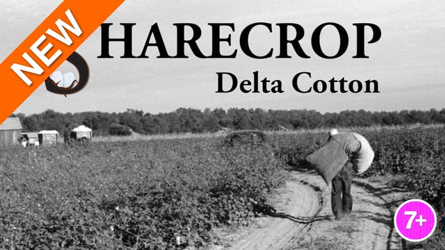 Sharecrop: Delta Cotton