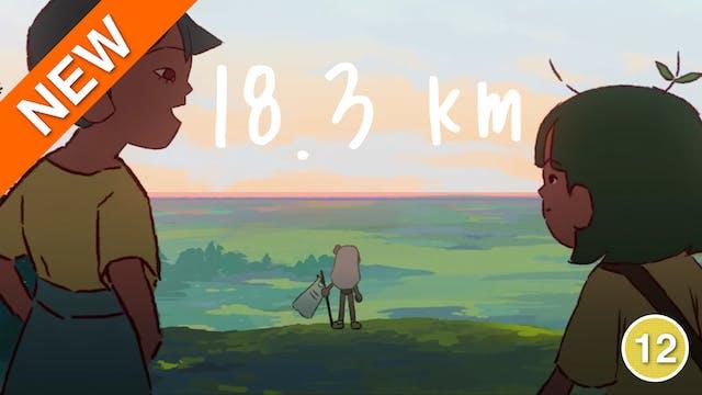 18.3km