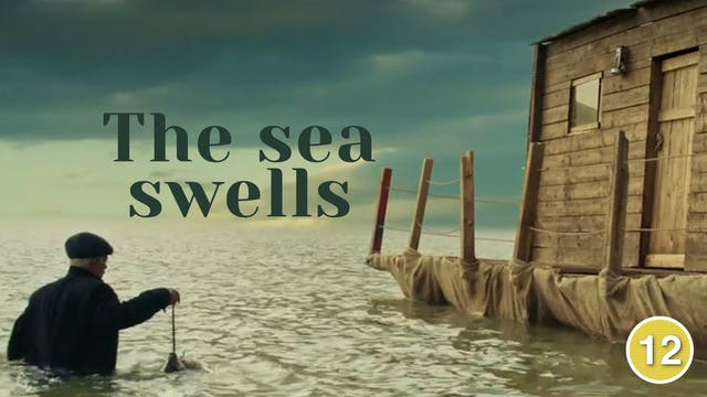 The Sea Swells