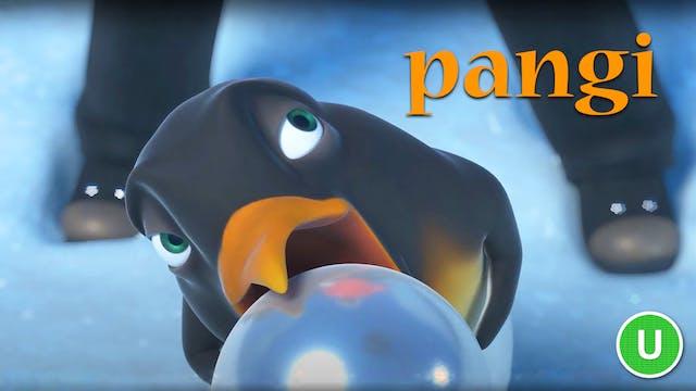 Pangi