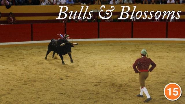 Bulls & Blossoms