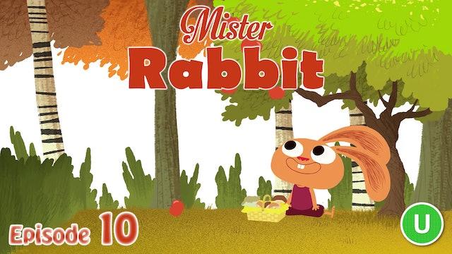 Mister Rabbit - The Mushrooms (Part 10)