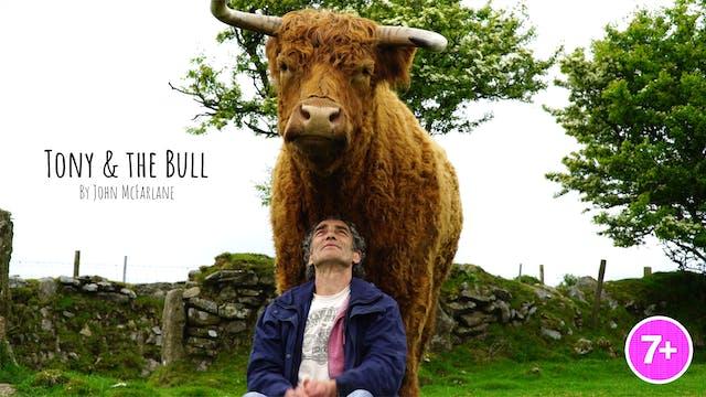 Tony & The Bull