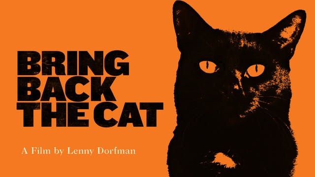 Bring Back the Cat (Amanda Abbington)