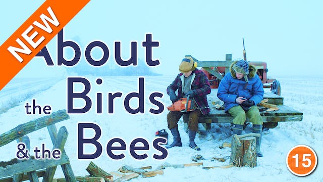 About The Birds and The Bees