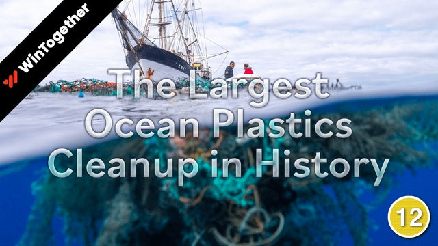 The Largest Ocean Plastics Cleanup in History