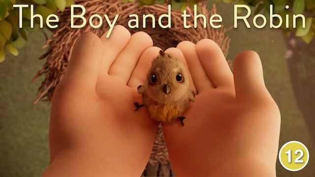 The Boy and the Robin