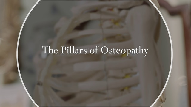 The Pillars of Osteopathy