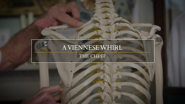 15. The Viennese Whirl / Restricted Shoulder Function