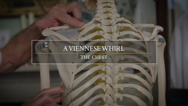 15. The Viennese Whirl / Restricted S...