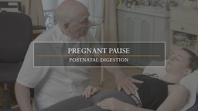 11. Pregnant Pause / Postnatal Digestion