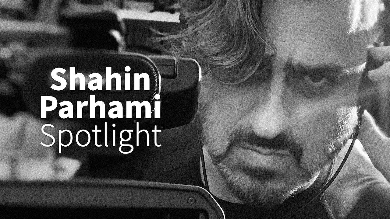Shahin Parhami