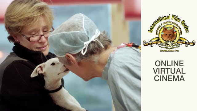 The Dog Doc @ International Film Series