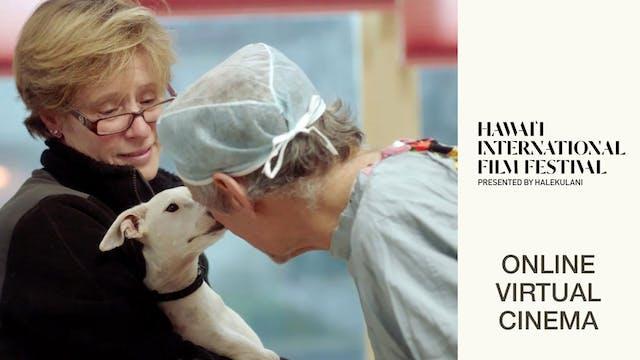 The Dog Doc @ Hawaii International Film Festival