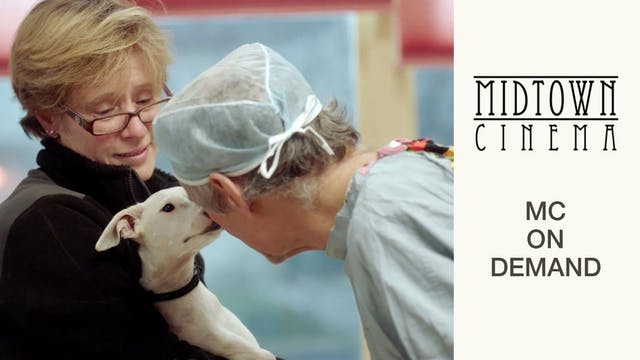 The Dog Doc @ Midtown Cinema