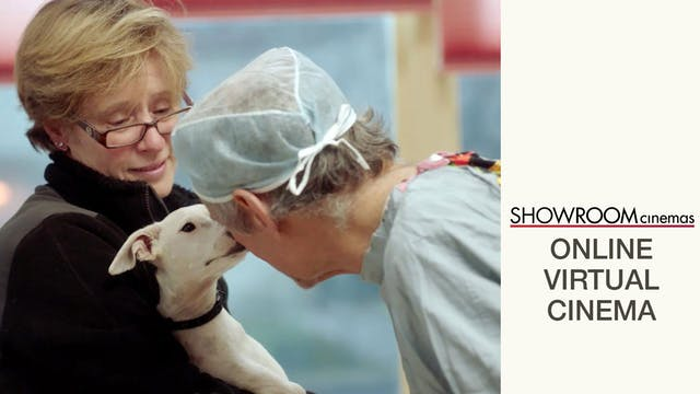 The Dog Doc @ ShowRoom Cinemas