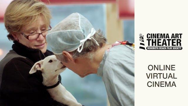 The Dog Doc @ Rehoboth Beach Film Society