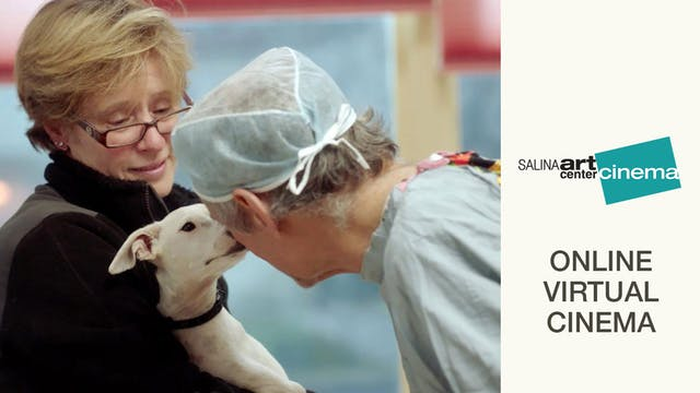 The Dog Doc @ Salina Art Center