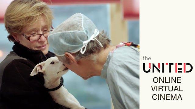 The Dog Doc @ The United