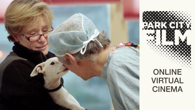 The Dog Doc @ Park City Film