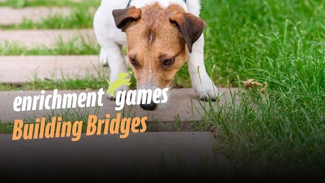 Enrichment:  Building Bridges