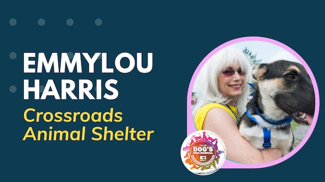 Emmylou Harris on Rescuing Dogs