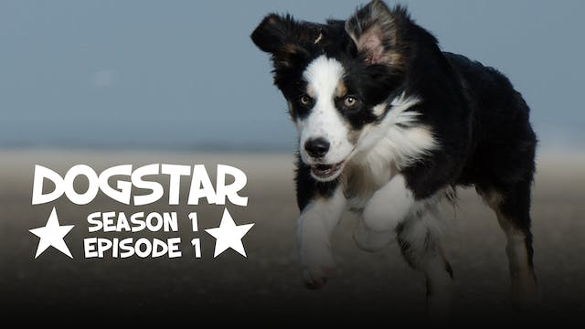 DOGSTAR season 1 episode 1