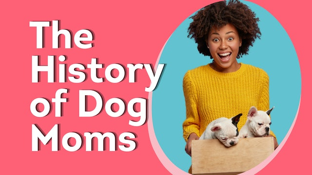 The History of Dog Moms