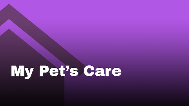 My pet's care