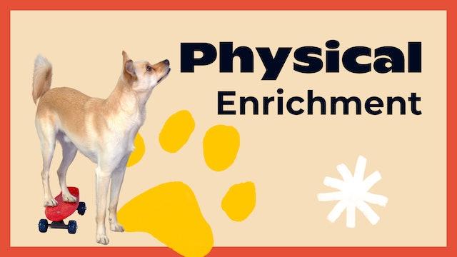 Physical Enrichment