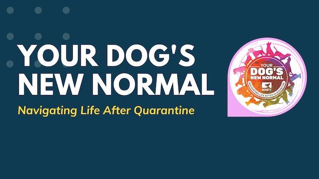 New Normal: Full Episode