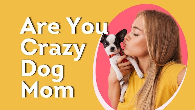 Celebrate Crazy Dog Mom Week Here