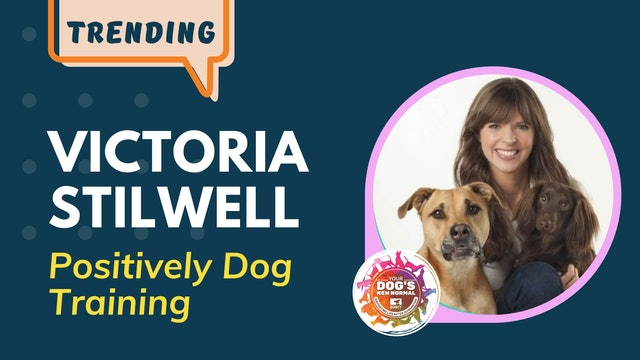 Victoria Stilwell on Going Back to Normal